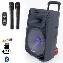 Haut parleur mobile avec Batterie ,Bluetooth et 02 micros sans fil - Traxdata TRX-019